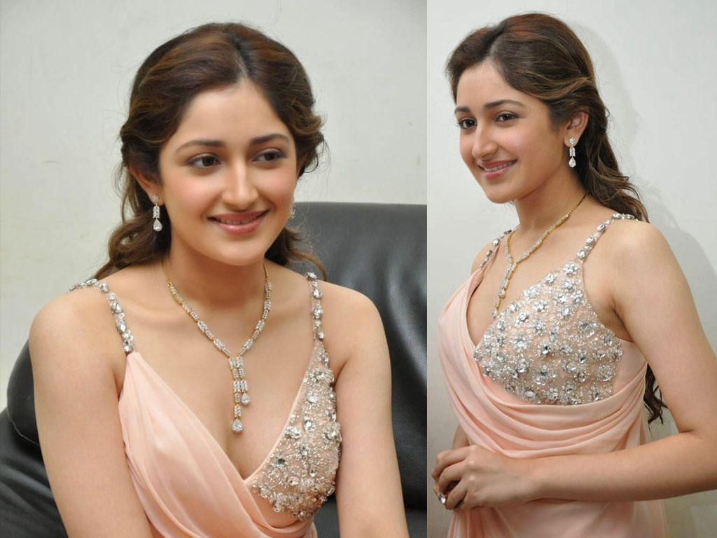 sayyeshaa star her kannada debute with puneeth singh