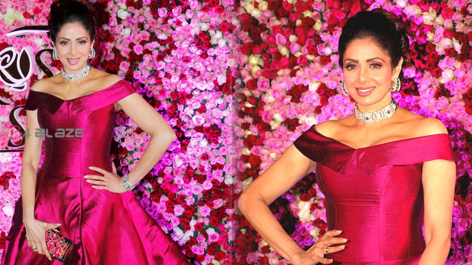 What happened the night Sridevi died, Sridevi died facts revealed in a new book!