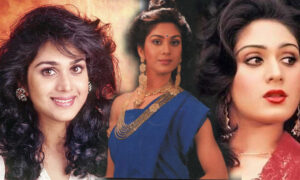Meenakshi-Seshadri-responds